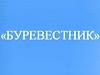 БУРЕВЕСТНИК, ДЮСШ Детско-юношеская спортивная школа Челябинск
